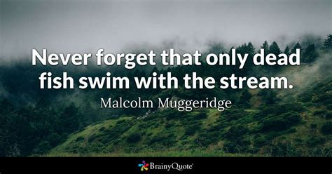 Malcolm Muggeridge - Never forget that only dead fish swim
