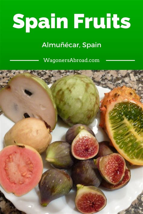 Testing The Spanish Fruits Of Almuñécar Wagoners Abroad