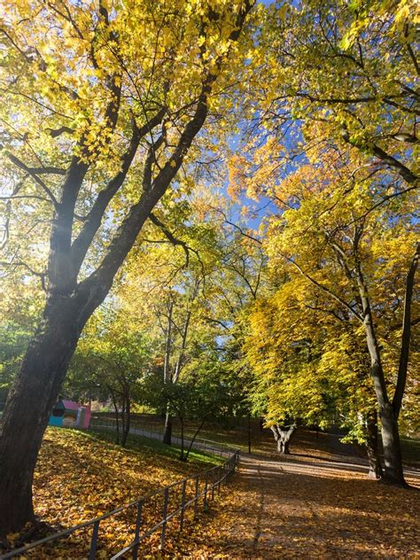 Autumn in Sweden: the Indian Summer in Stockholm