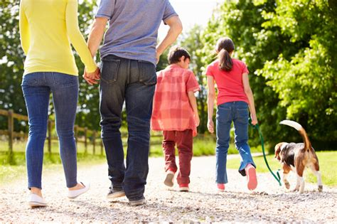 How to get Family Fit in 2015   V8 UK