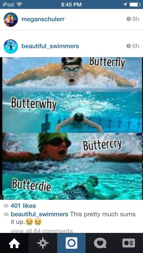 The different states of a 100 butterfly