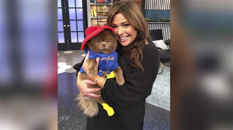 This Paddington Look-alike Went From Shelter Pup to